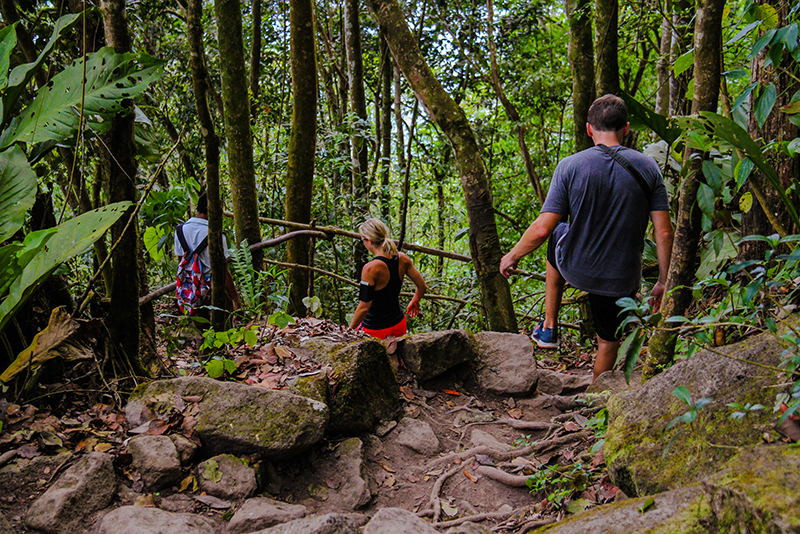 St. Lucia Tours - Gros Piton hike guided trail