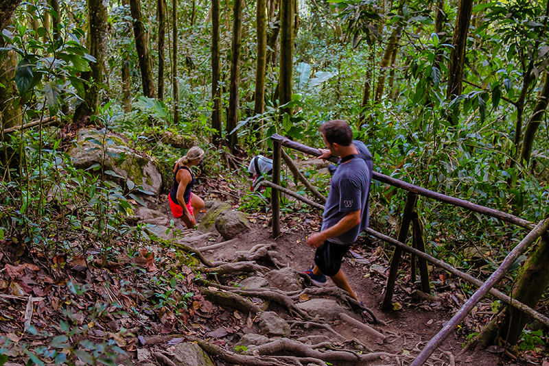 St. Lucia Tours - Gros Piton hike trail