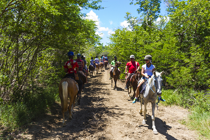 St. Lucia tours - Horse Back riding group