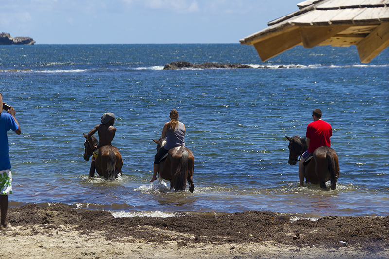St. Lucia tours - Horse Back riding couples swim