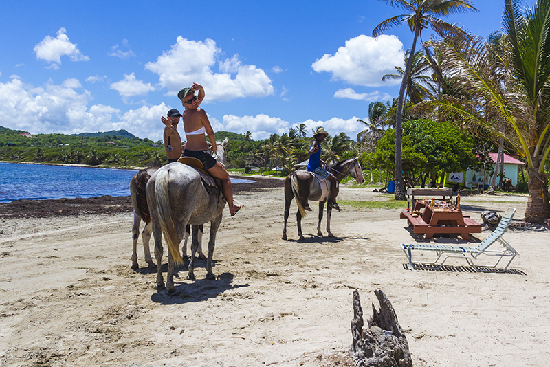 St. Lucia tours - Horse Back riding Private Couples