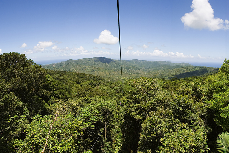 St. Lucia Tours - Rainforest Tram Ride