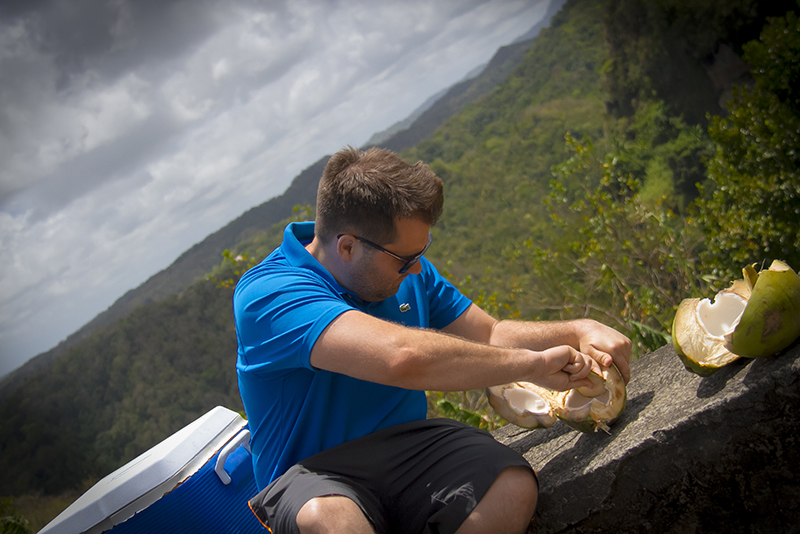 St. Lucia Tours - Fresh Coconut water and jelly