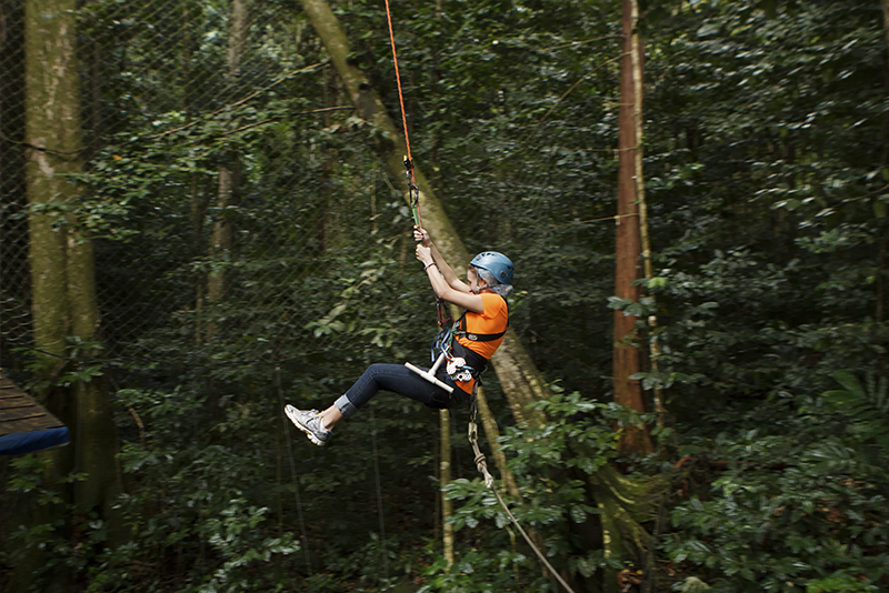 St. Lucia Tours - Tarzan Swing Rainforest