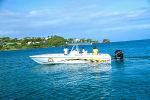St. Lucia Speed Boat Charters - shark1