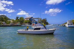St. Lucia Deep Fishing Boat Charters - bumpers
